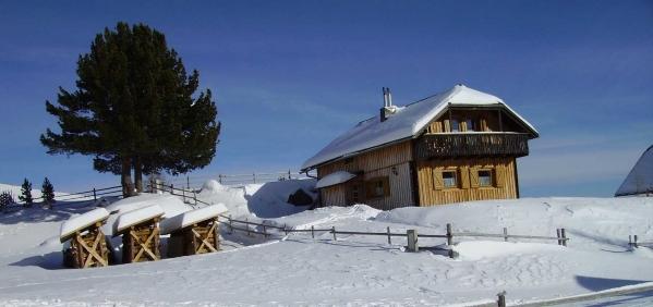 Almhaus Winter
